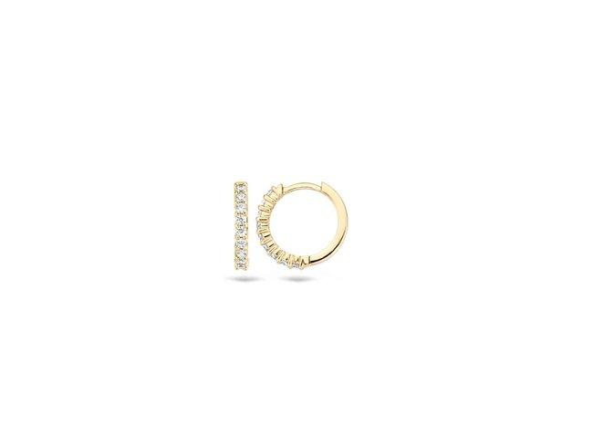 oorring - goud 14 kt | Blush